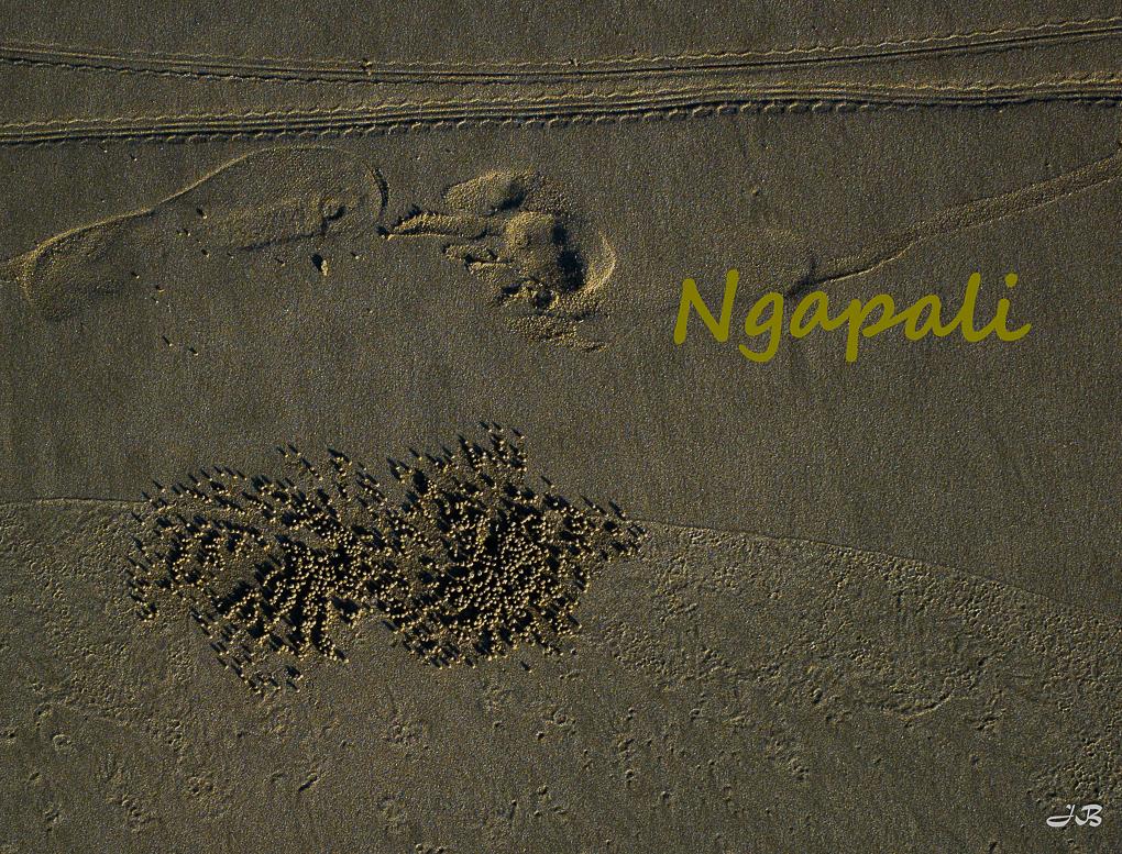 slides/Ngapali_title.jpg  Ngapali_title